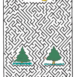 Labyrint 61