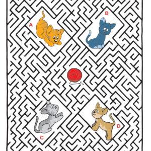 Labyrint 62